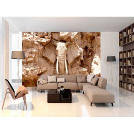 Kamenný slon (150x105 cm) - Murando DeLuxe