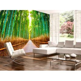 Bambusová stezka (150x105 cm) - Murando DeLuxe