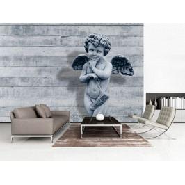 Tapeta anděl strážný (150x105 cm) - Murando DeLuxe