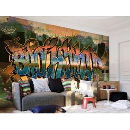 Tapeta Graffiti Street Art (150x105 cm) - Murando DeLuxe