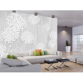 Tapeta Bílé květy na dřevě (150x105 cm) - Murando DeLuxe