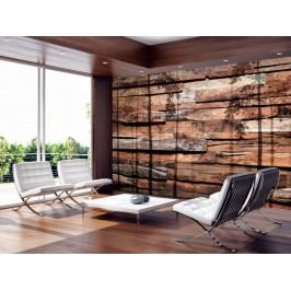 Tapeta stín lesa (150x105 cm) - Murando DeLuxe
