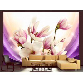 Fototapeta - Proměny magnolie (150x105 cm) - Murando DeLuxe