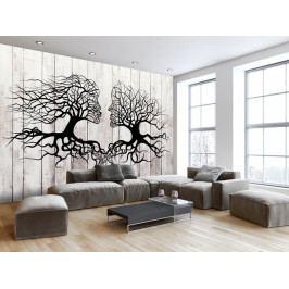 Tapeta polibek stromů (150x105 cm) - Murando DeLuxe