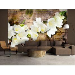 Bílé květiny na dřevě (150x105 cm) - Murando DeLuxe