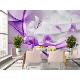 Tapeta Orchidej na fialovém obláčku (150x105 cm) - Murando DeLuxe