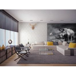 Tapety zvířata - Nosorožec (150x116 cm) - Murando DeLuxe