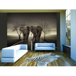 Sloni na cestě (150x116 cm) - Murando DeLuxe