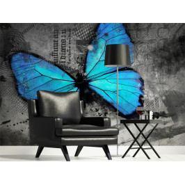 Tapeta motýl - modrý (150x116 cm) - Murando DeLuxe