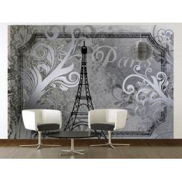 Retro Paříž - stříbrná (150x105 cm) - Murando DeLuxe