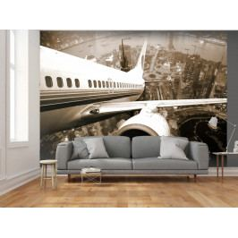 Fototapeta pohled z letadla (150x116 cm) - Murando DeLuxe