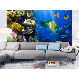 Podmořský ráj (150x116 cm) - Murando DeLuxe