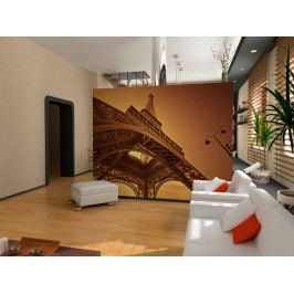 Síla Paříže (150x116 cm) - Murando DeLuxe