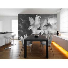 Tapeta zvířata Bájný Pegas (150x116 cm) - Murando DeLuxe