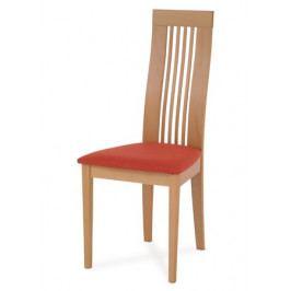 Jídelní židle BC-2411 BUK3 - AT