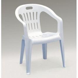 Zahradní plastová židle PIONNA-UZN