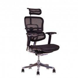 Kancelářská židle na kolečkách Office Pro SIRIUS Q 24 – s područkami i podhlavníkem, nosnost 150 kg