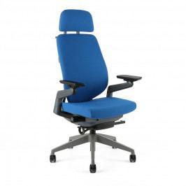 Kancelářská ergonomická židle Office Pro KARME — více barev, s podhlavníkem a područkami