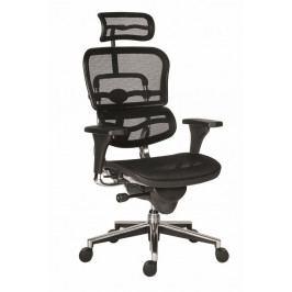 Manažerská židle Antares ERGOHUMAN – černá, síť, nosnost 150 kg