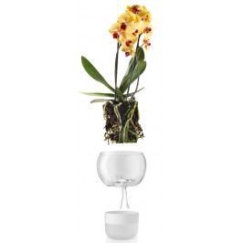 Samozavlažovací skleněný květináč na orchidej O15cm , eva solo