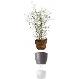 Samozavlažovací květináč křídově šedý v.18cm, eva solo