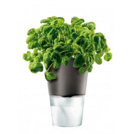 Samozavlažovací květináč na bylinky, tmavě šedá 13cm, Eva Solo
