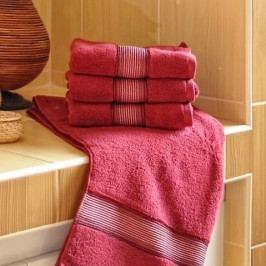 Polášek mikrofroté ručník Dita vínová 50x100 cm