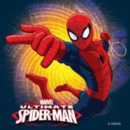 Jerry Fabrics polštářek Spiderman 2016 40x40 cm