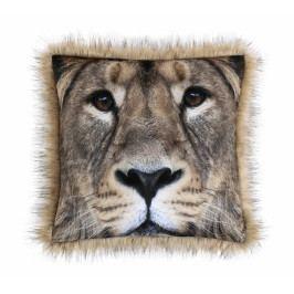 Bellatex polštářek SAFARI lev