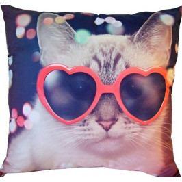 Dadka Fotopolštářek Kočka v brýlích 40x40 cm