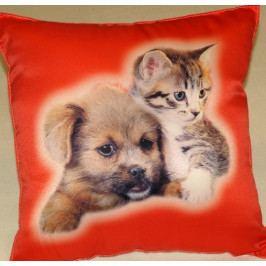 Dadka Fotopolštářek Kotě a pes na červeném 40x40 cm
