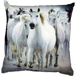 Dadka Fotopolštářek Stádo bílých koní 40x40 cm