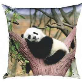 Dadka Fotopolštářek Panda 40x40 cm