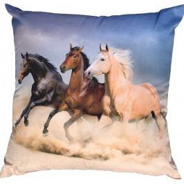 Dadka Fotopolštářek Koně na poušti 40x40 cm