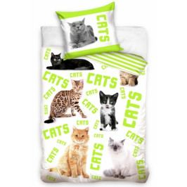 BedTex povlečení bavlna Kočky a Kocouři 140x200+70x90 cm