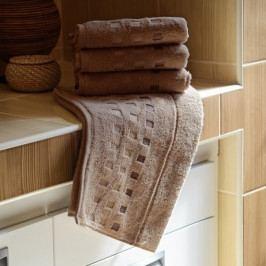 Polášek mikrofroté ručník Zora světle hnědá 50x100 cm