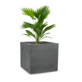 Blumfeldt Luxoflor, květináč, 55 x 50 x 55 cm, sklolaminát, do interiéru i exteriéru, tmavě šedý