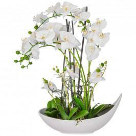 Rostlina Umělá Phalänopsis Ii