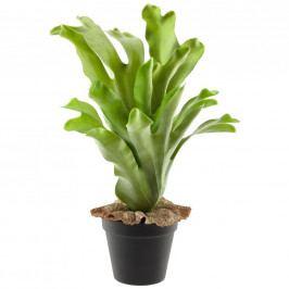 Rostlina Umělá Geweihfarn I