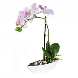 ORCHIDEJ orchidej 28 cm