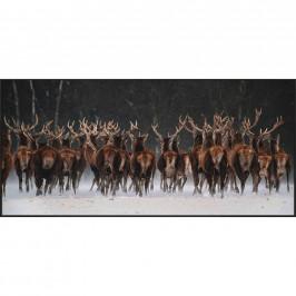 Monee TISK UMĚLECKÝ, zvířata, 150/70 cm - vícebarevná
