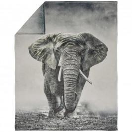 Esposa DEKA, polyester, 150/200 cm - šedá