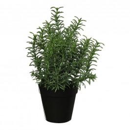 UMĚLÁ ROSTLINA 33 cm - zelená