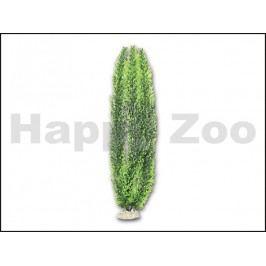 Akvarijní rostlina HAILEA M-007 50cm