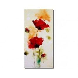 Obraz - Abstraktní květy II