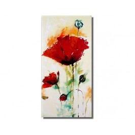 Obraz - Abstraktní květy