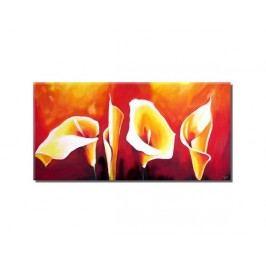 Obraz - Kaly na červeném