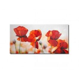 Obraz - Rozevřené květy