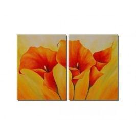 Obrazový set - Oranžové kaly