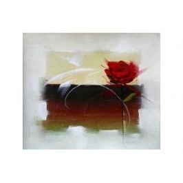Obraz - Růže